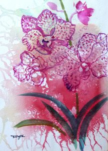 Pink Orchid by Tan Teng Poh
