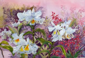 A Harmony of Orchids by Lim Sock Hoon